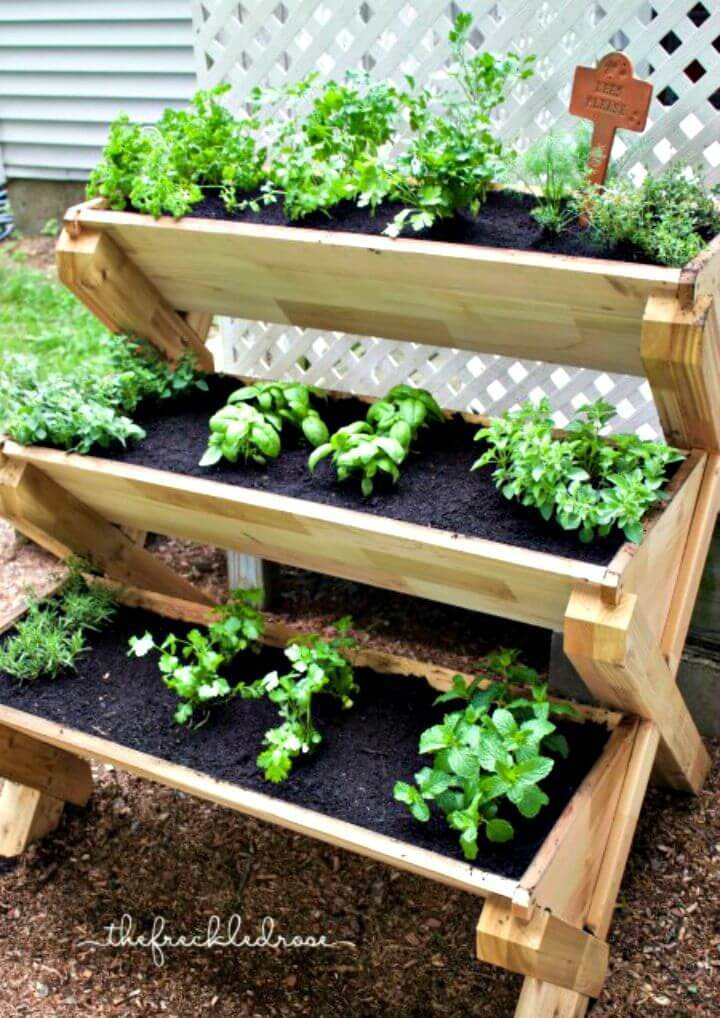 Chef-Friendly DIY Herb Garden