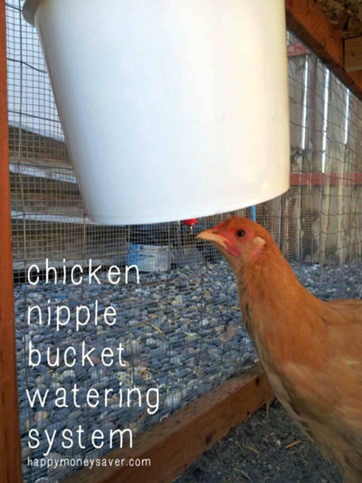 DIY Chicken Nipple Waterer using a Plastic Bucket