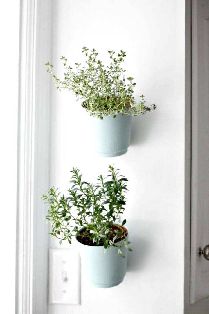 Easy DIY Hanging Wall Planters - Herb Garden