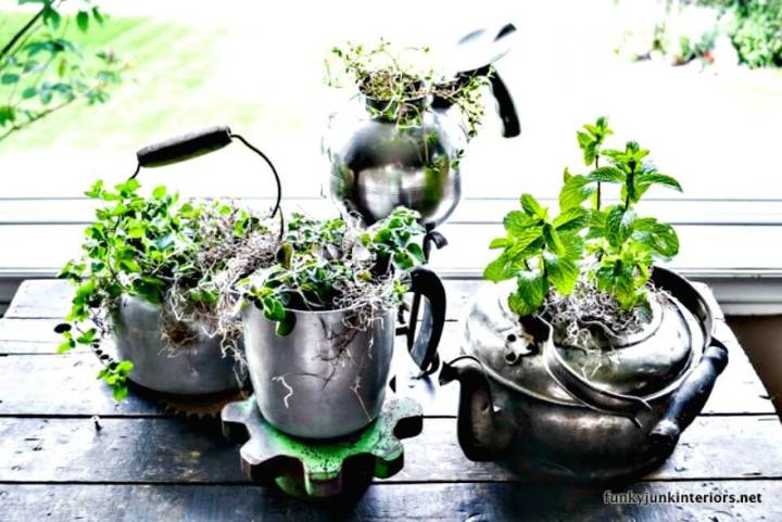DIY Reuse Old Kettle Style Herb Garden