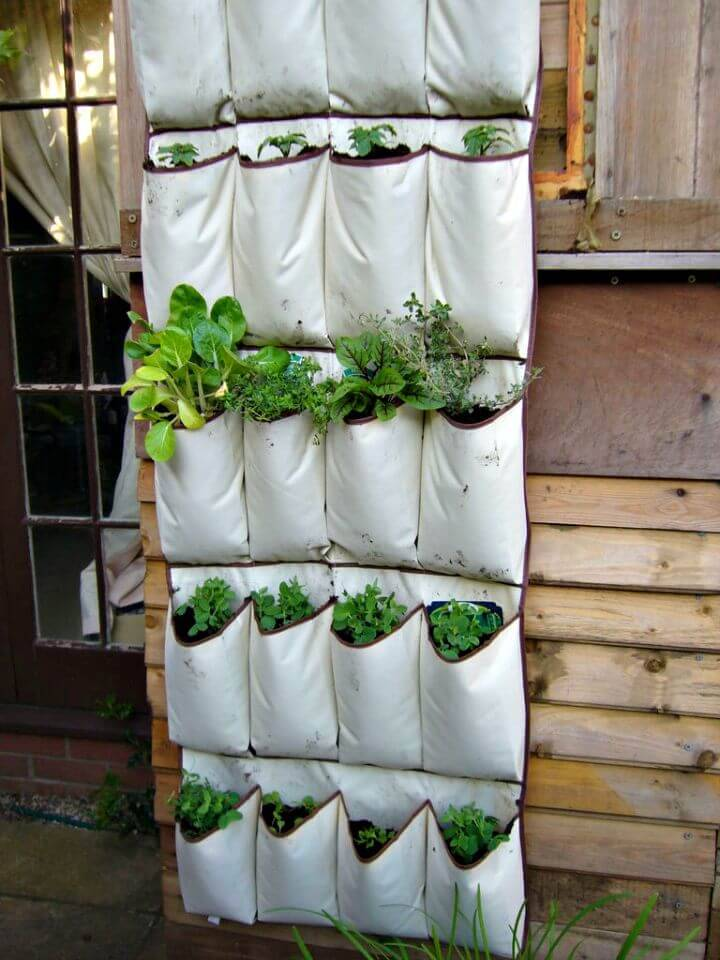 DIY Vertical Vegetables - Herb Garden