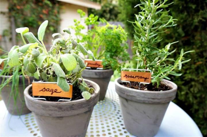 Easy DIY Tabletop Herb Garden