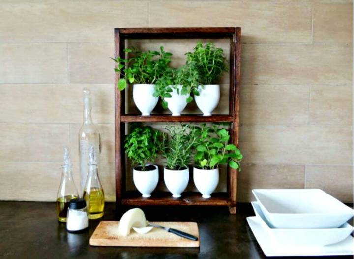 Herb Planters from Kitchen Recyclables
