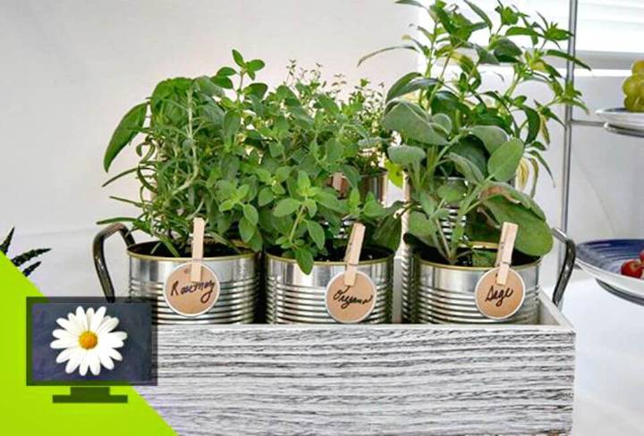 How To Make Herb Garden - DIY