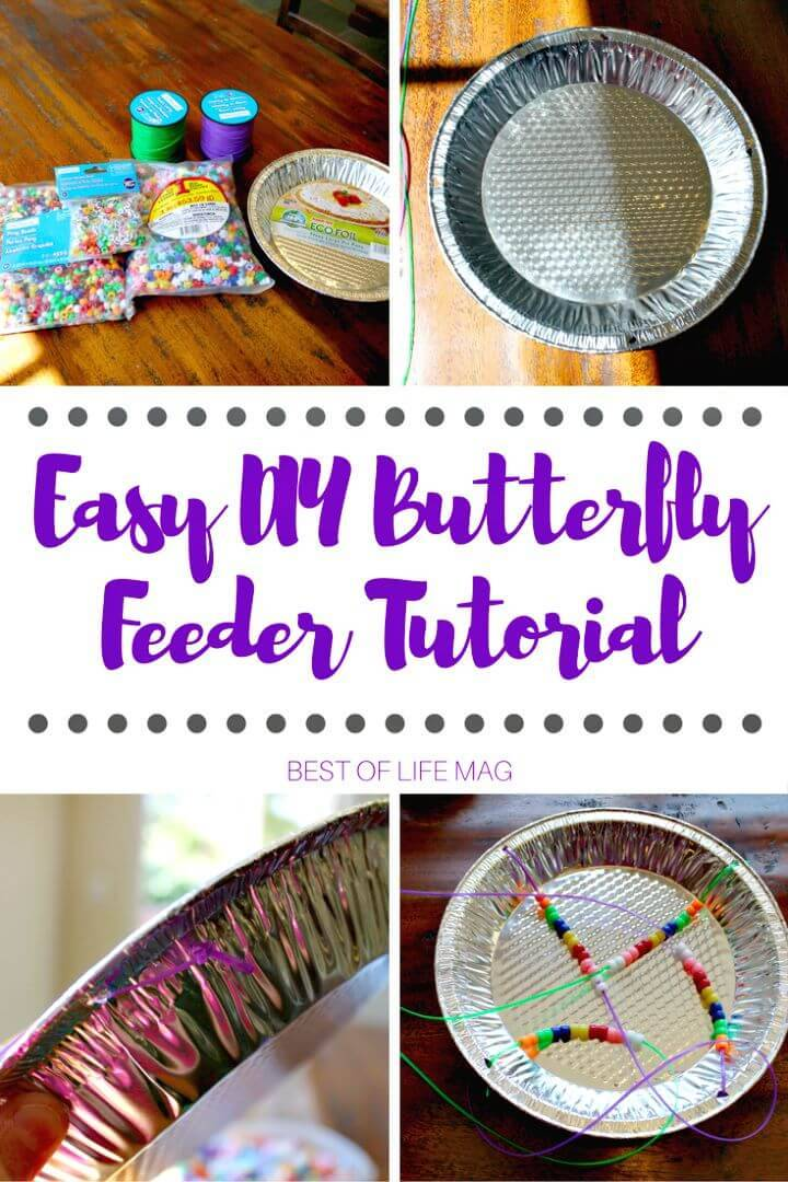 DIY Butterfly Feeder Tutorial