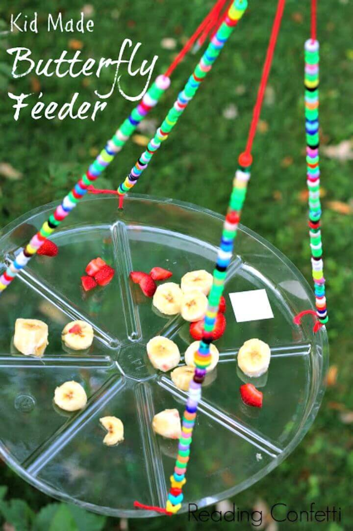 Super Easy DIY Butterfly Feeder