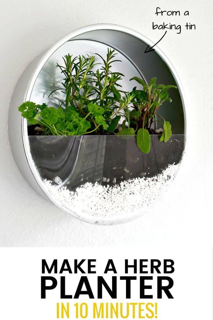 Quick DIY Indoor Herb Garden