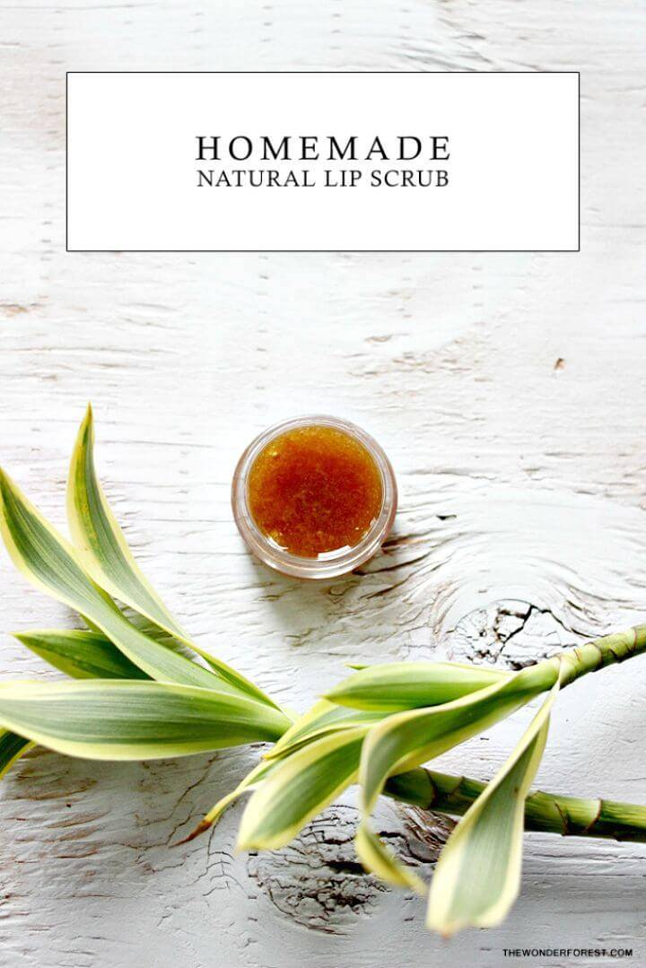Best Homemade Natural Lip Scrub Recipe - DIY