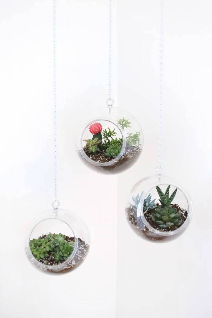 DIY Plastic Fishbowls Hanging Planter
