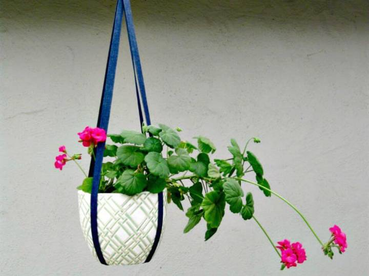 How to Make Quick Plant Hanger