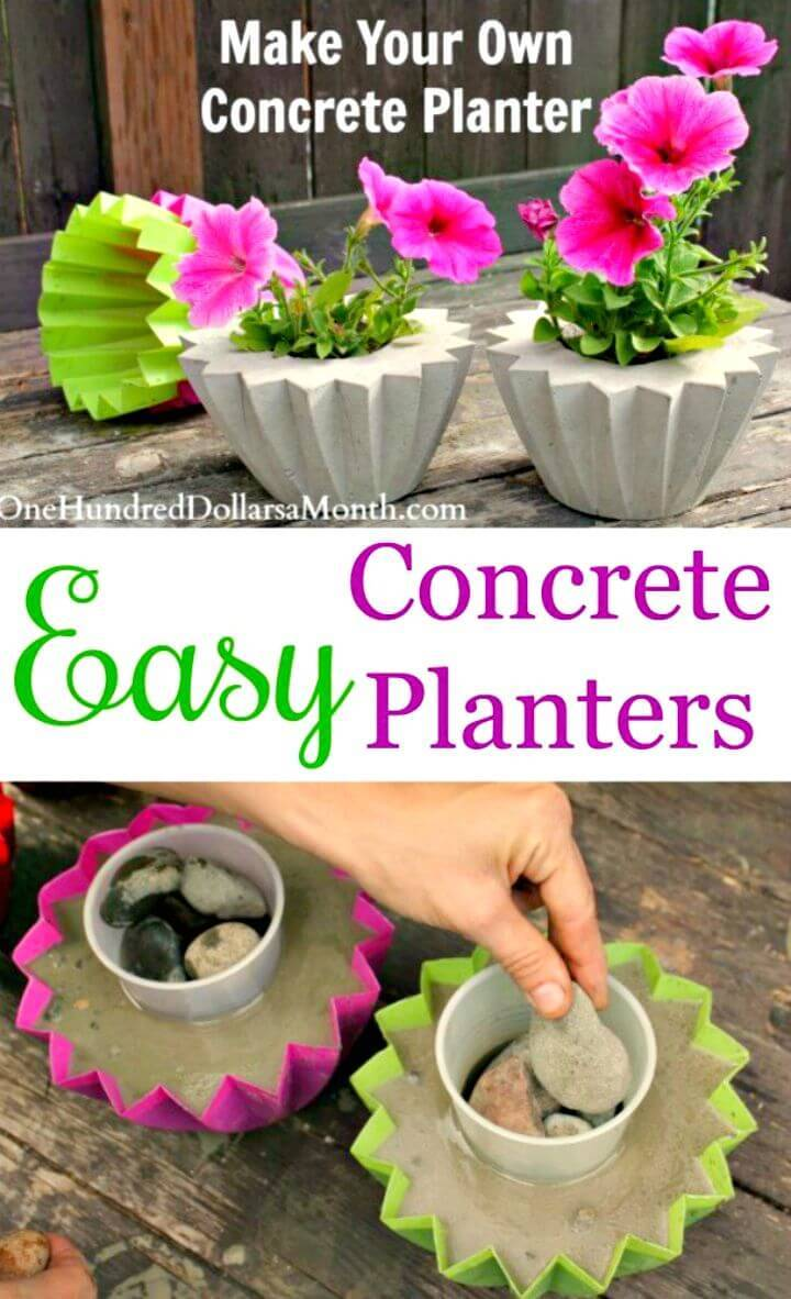 DIY Concrete Planter for Indoor Garden