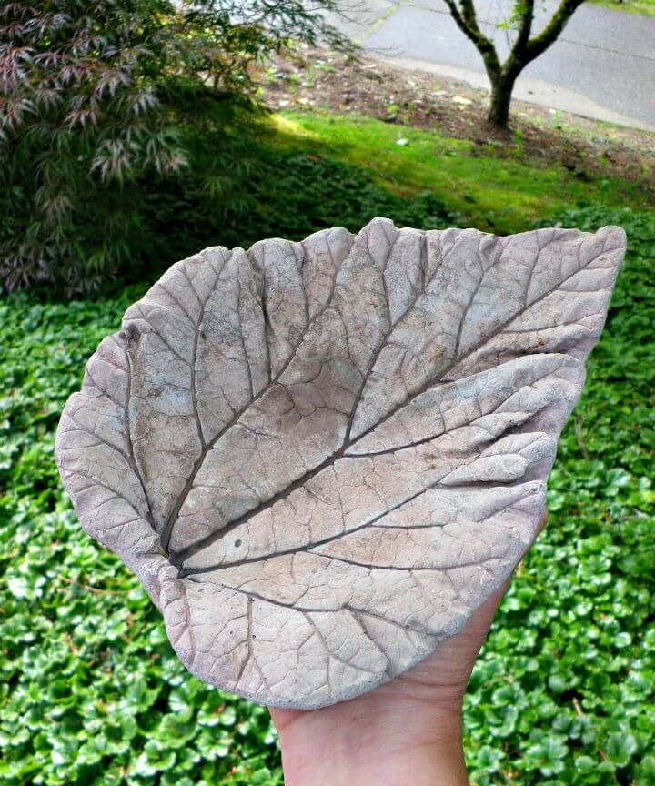Easy and Simple DIY Concrete Leaf Castings