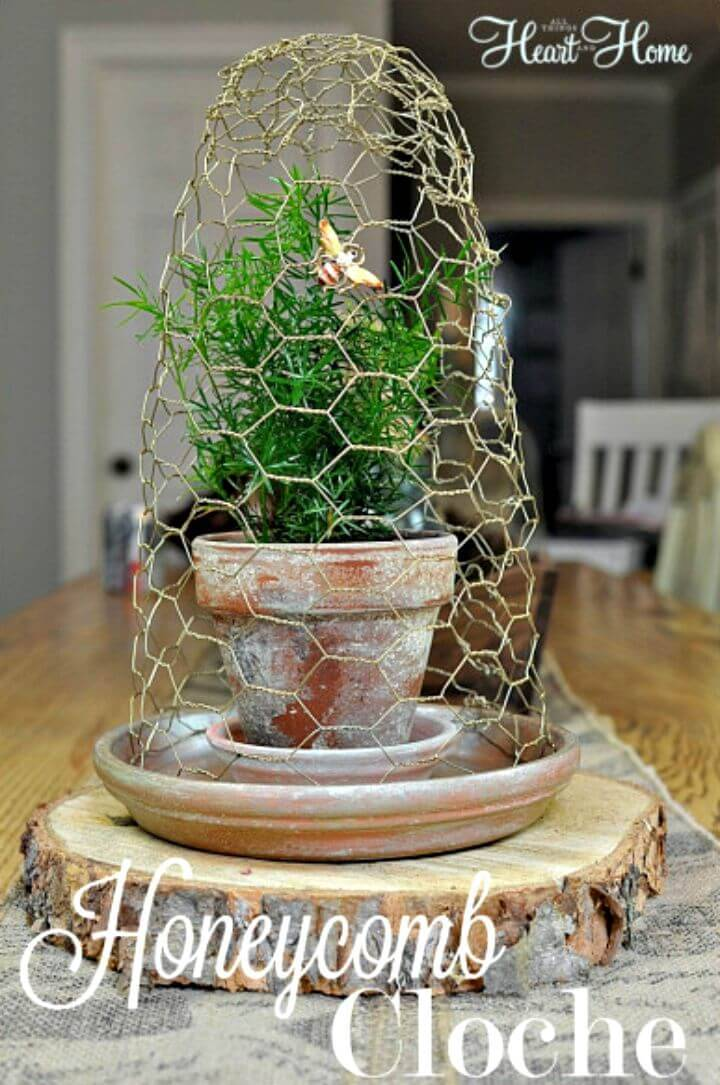 Inexpensive DIY Chicken Wire Honeycomb Cloche
