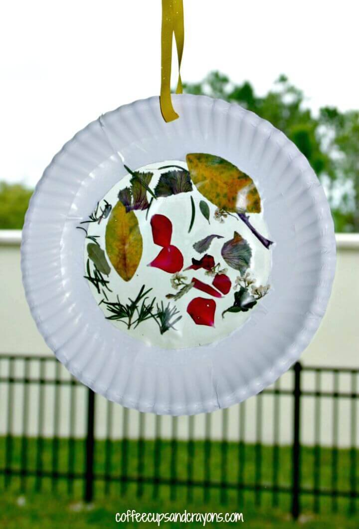 Make Nature Suncatcher Craft for Kids