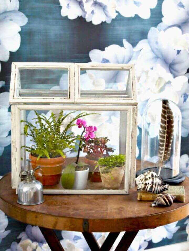 Inexpensive DIY Terrarium Using Old Picture Frames