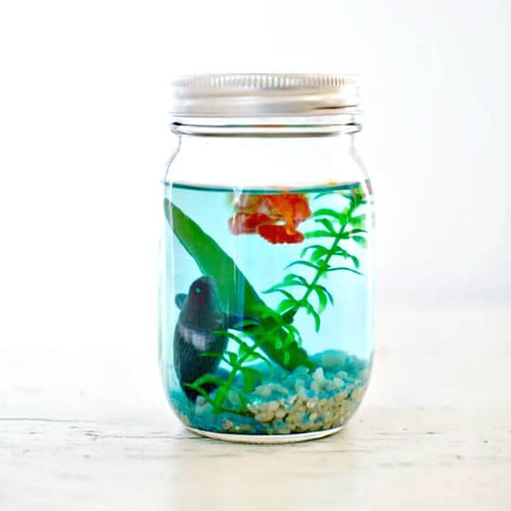 Easy DIY Mason Jar Aquarium