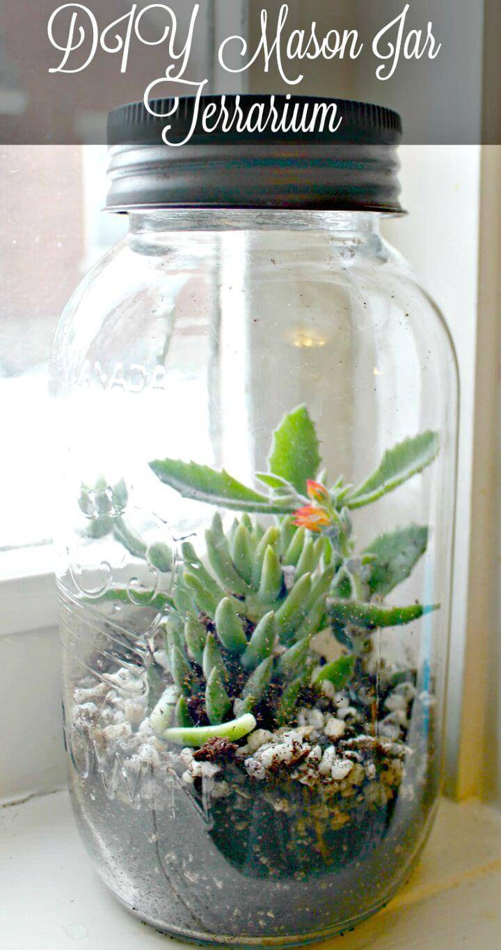 How To Make Mason Jar Terrarium