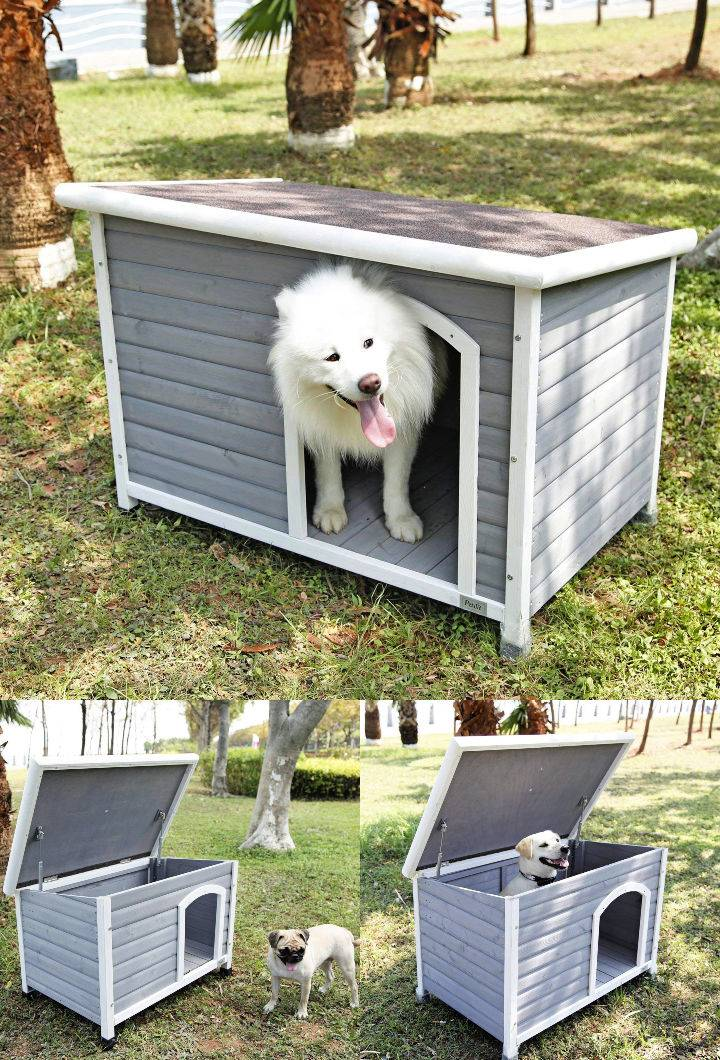Petsfit Dog House for Outdoor
