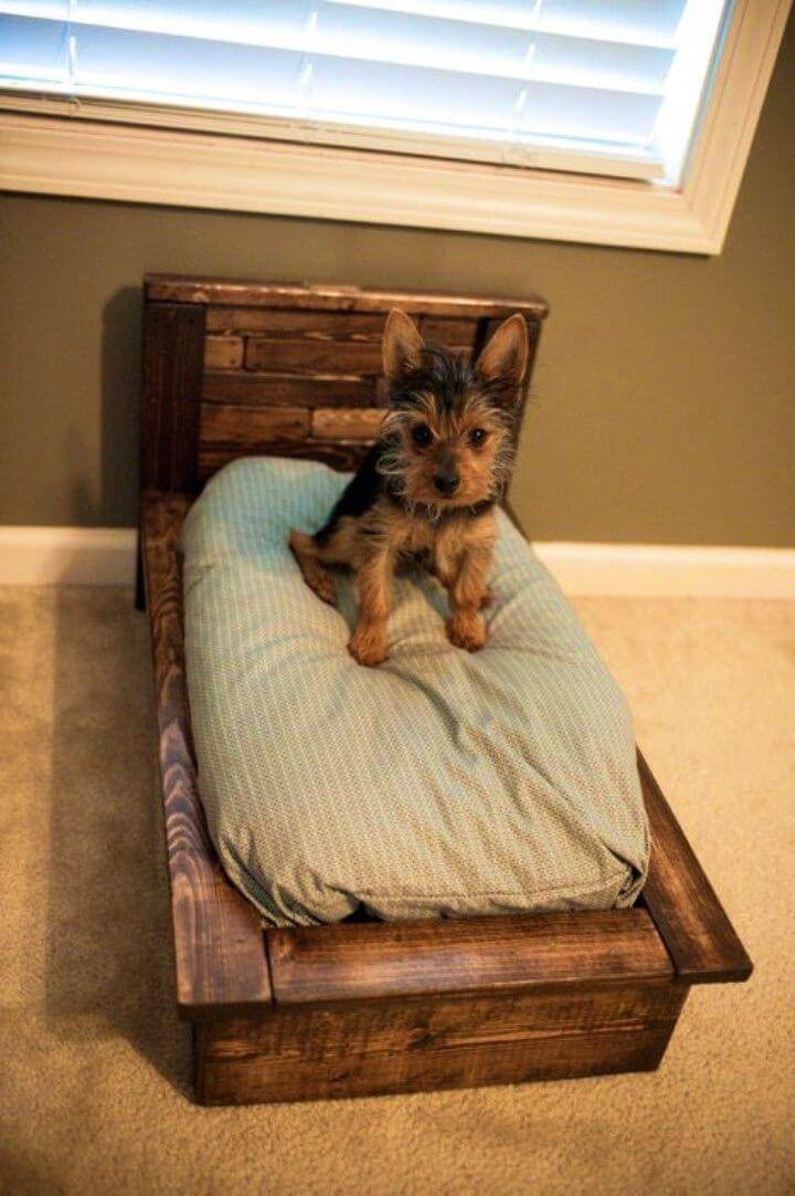 Build a Pallet Dog Bed