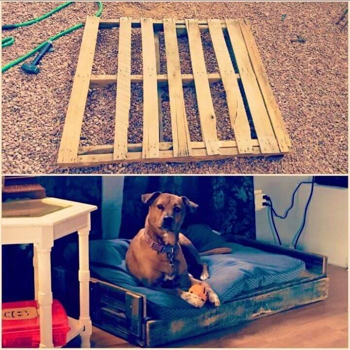 How to Make Pallet Dog Bed