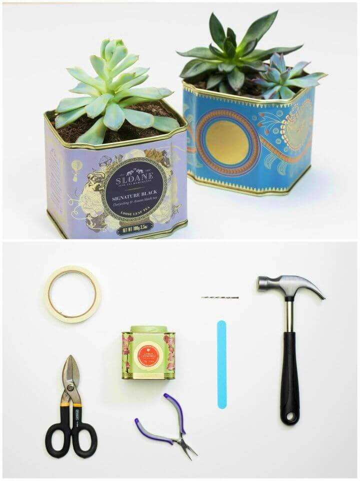 How to Make Tea Tin Planters