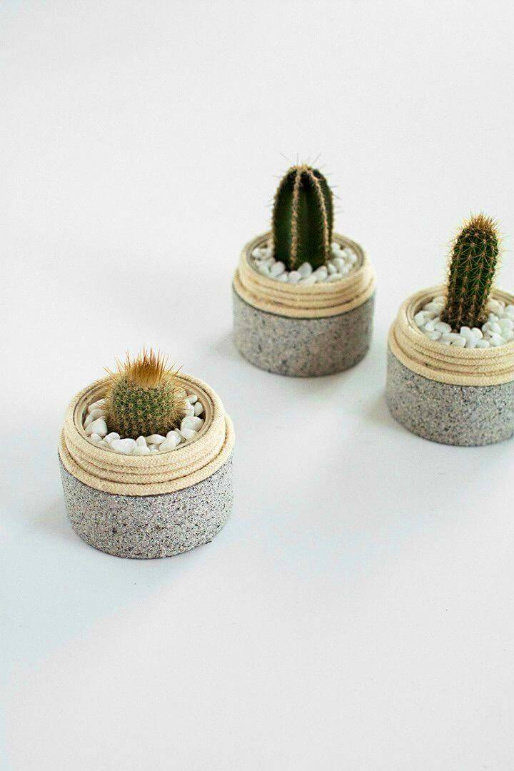 Upcycle Plastic Jars Into Mini Planters