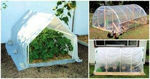 16 PVC Greenhouse Plans Help You to Build Low Cost DIY Greenhouse