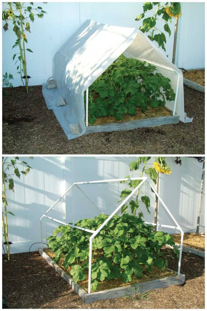Build Your Own PVC Pipe Greenhouse