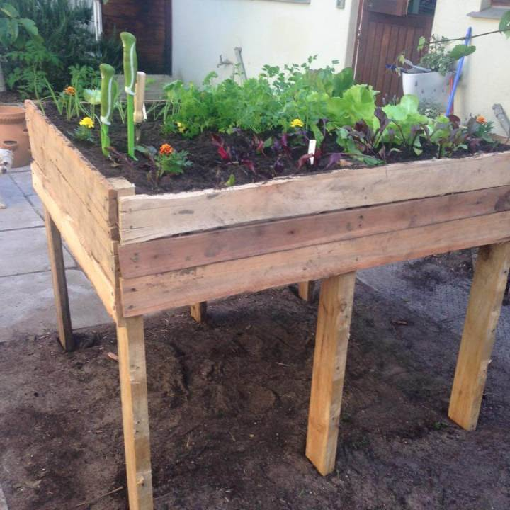 handcrafted pallet raised herb garden bed