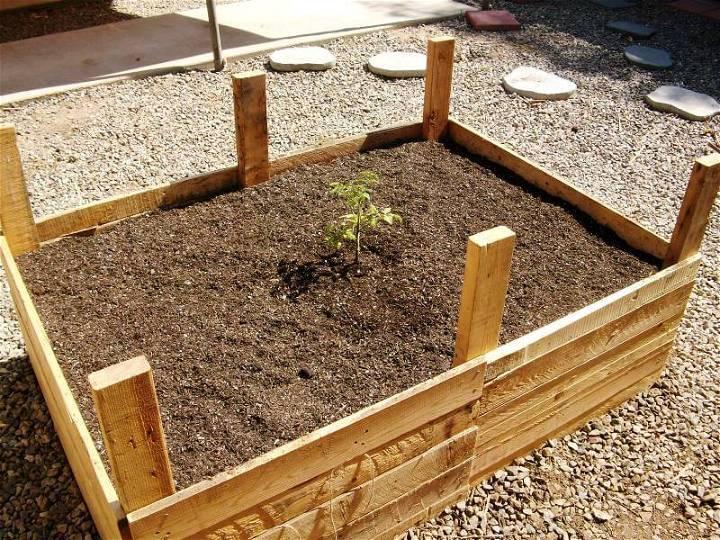 pallet wood raised bed vegetable garden