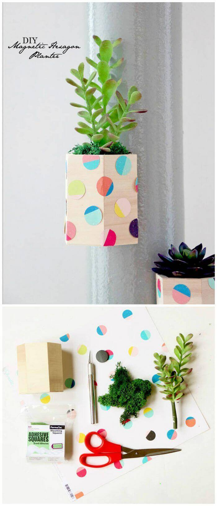 DIY Magnetic Hexagon Planters