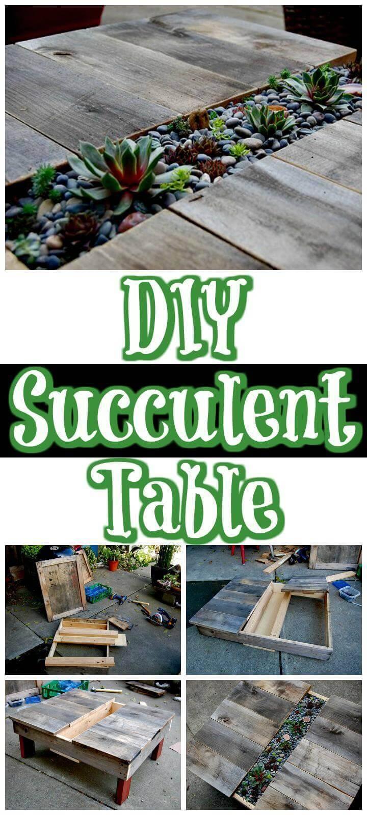 easy handmade succulent table