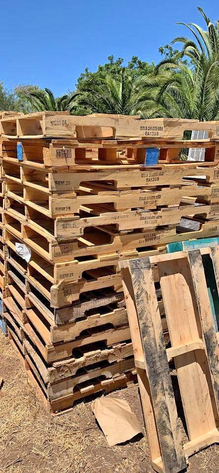 Find Wooden Pallets for free