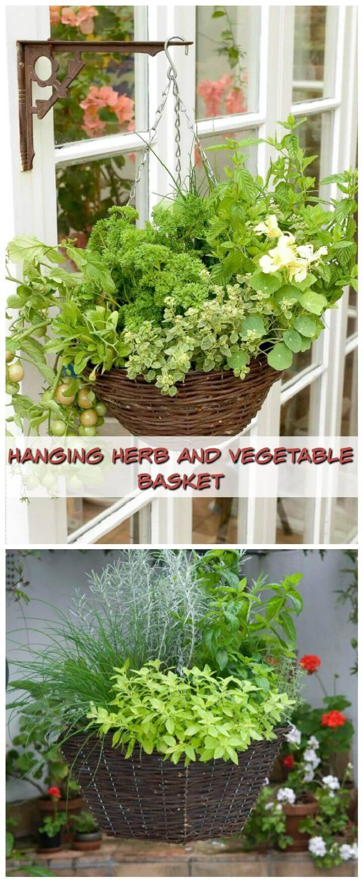 Hanging Herb And Vegetable Basket