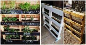 How To Make a Vertical Pallet Herb Garden