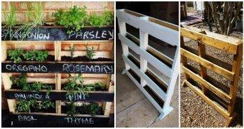 How To Make a Vertical Pallet Herb Garden