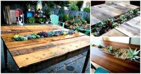 Top 6 DIY Succulent Table Tutorials Make Your Own Succulent Table