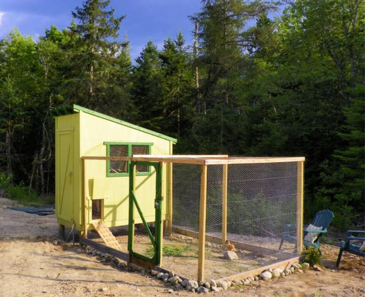 Build Your Own Chicken Coop and Run