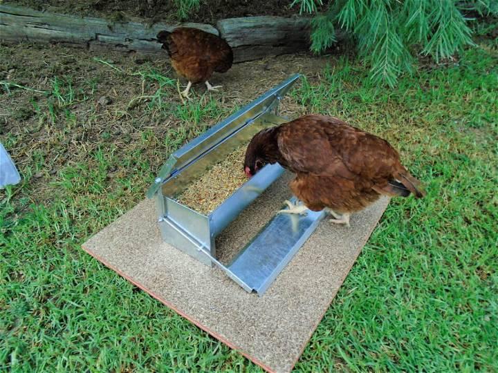 DIY Automatic Chicken Feeder