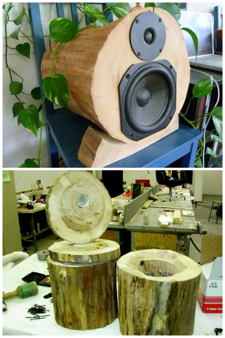 DIY Live Edge Tree Speakers