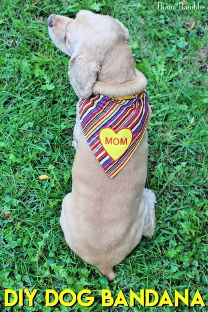 DIY Personalized Dog Bandana