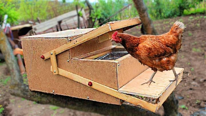 Homemade Automatic Chicken Feeder