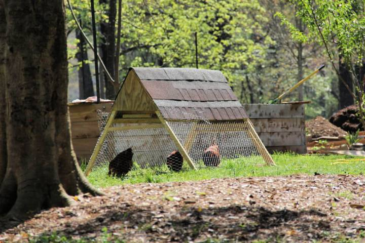 Make Your Own Chicken Tractor