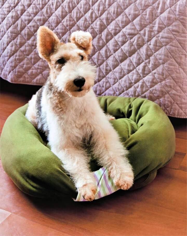 Sweatshirt Dog Bed Free Pattern