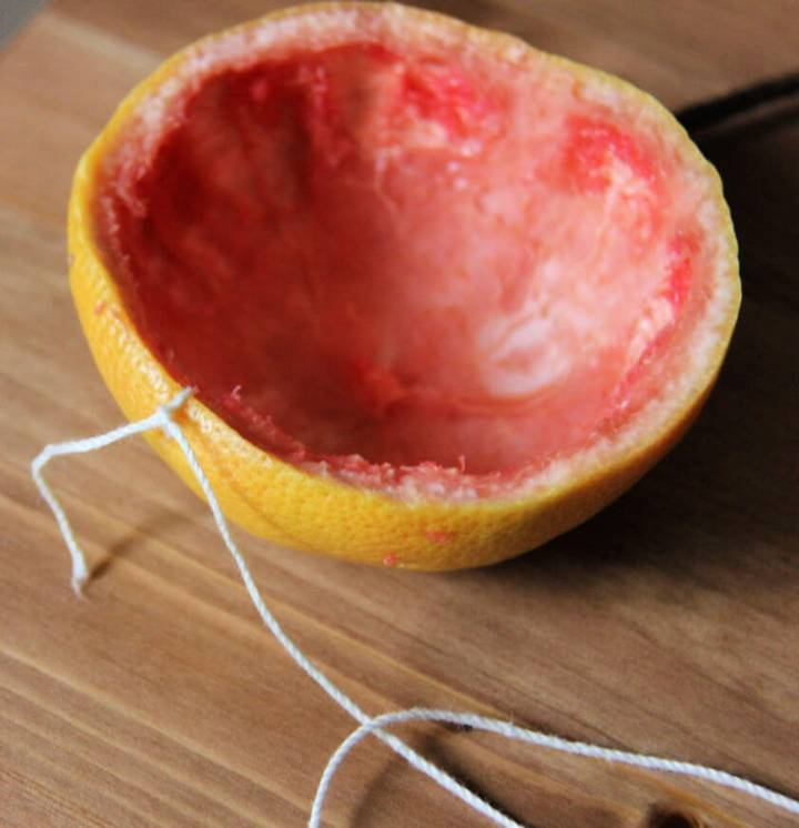 Thread Red Grapefruit Bird Feeders