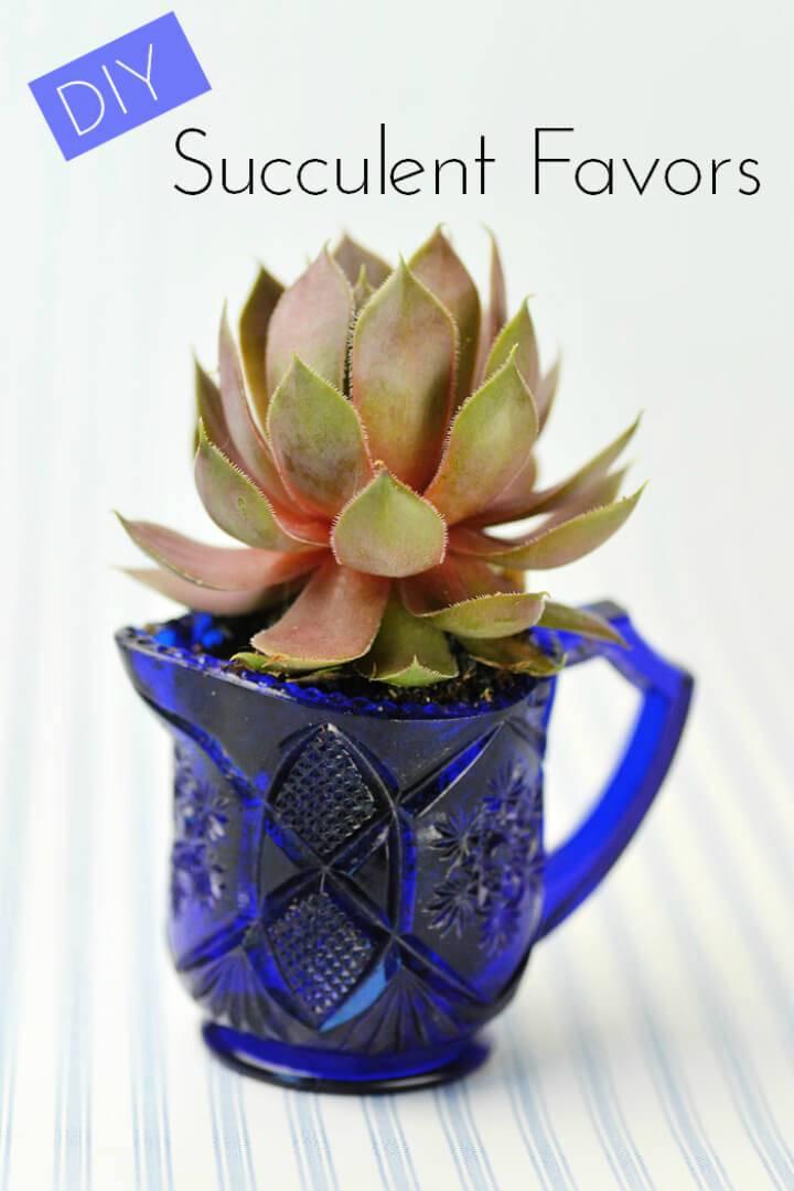 Wedding Succulents in Vintage Glassware