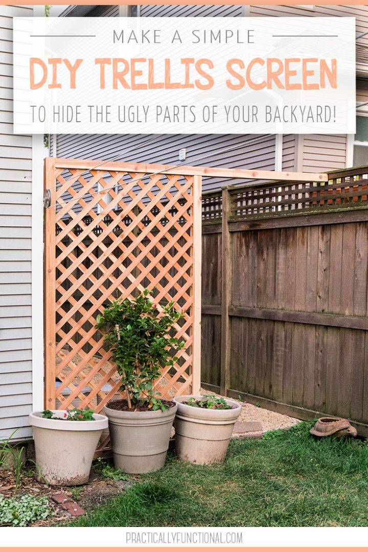 Build Trellis Screen for Your Backyard