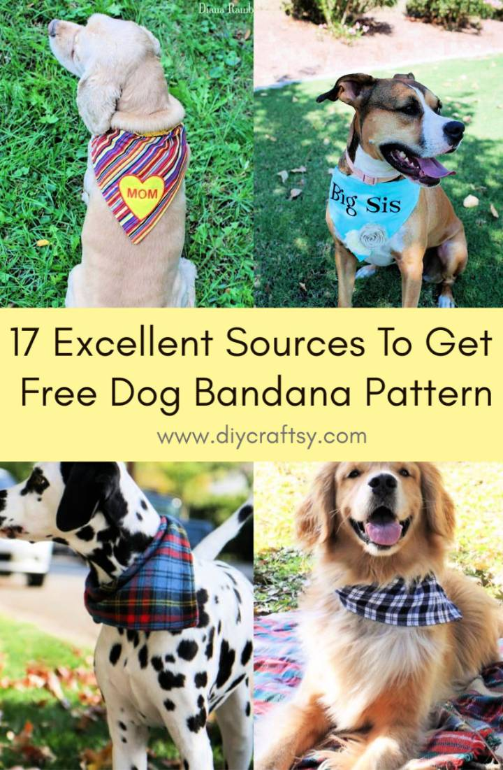 Excellent Sources To Get Free Dog Bandana Pattern
