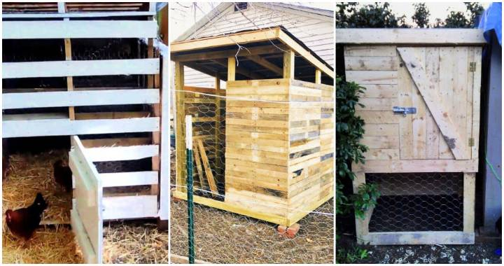 20 Pallet Chicken Coop Plans You Can Build On Low Budget