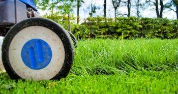 Tools That Can Help You Clean Your Backyard and garden